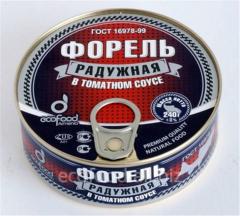 Форель Радужная в Томатном Соусе