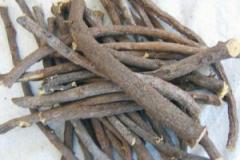 Glycyrrhiza r