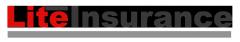 Система предусмотренная для автоматизации страховой агентной сети LiteInsuranceOnline