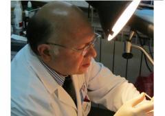 Лечение всех видов бесплодия с применением самых современных методов