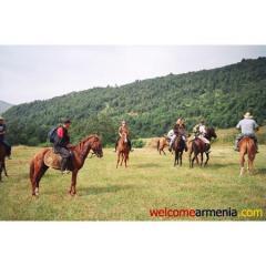 Отдых в горах и конные туры.